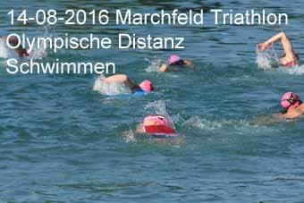 14-08-2016 Marchfeld Triathlon - Olympische Distanz - Schwimmen
