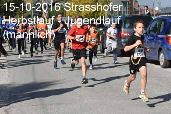 15-10-2016 Strasshofer Herbstlauf - Jugendlauf (m�nnlich)