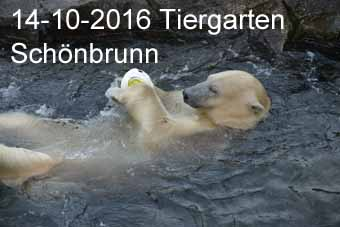 14-10-2016 Tiergarten Sch�nbrunn