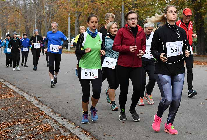 Benefizlauf der Freunde des Laufsports