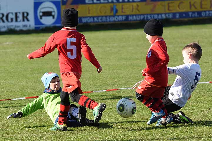 Fußball U6 Bambini - SV Gerasdorf Stammersdorf : FAC